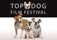 Photo From Top Dog Film Festival Facebook Page